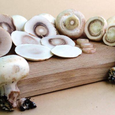 champignon-recette-blog-la-cuisine-des-emotions