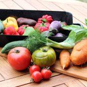 atelier-cuisine-vegetarienne-la-cuisine-des-emotions